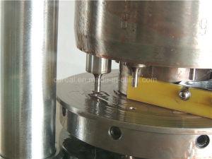 南京Zp-5の丸薬および円形のタブレットのための小さい回転式タブレットの出版物