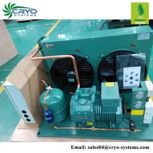 Unidades de refrigeração a Sala Fria 2 HP Unidade de condensação