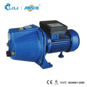 熱保護装置(JET100S)が付いているAnshi 1.0HPのジェット機の水ポンプ