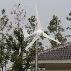 Gerador de moinho de vento pequena família 12V /24V 100W branco (SHJ-100S)