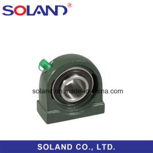 China-Hersteller-Kissen-Block-Peilung Ucpa208 Ucpa209 Ucpa210 Ucpa211