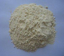高品質によって乾燥されるニンニクの粉