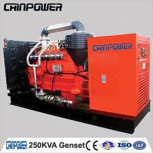 250kVA 200kw Cummins Natural Gas Generator