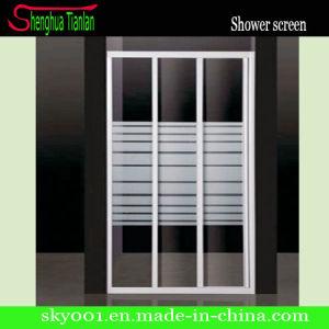 4мм закаленное безопасности из стекловолокна безрамные двери душ (TL-409)