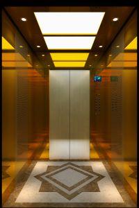 Vvvf goldene Spiegel-Passagier-Haus-panoramische Ladung-Beobachtungs-Wohnhöhenruder (16K003)