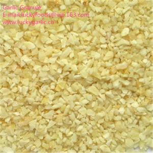 Alimentação de fábrica grânulos de alho com boa qualidade