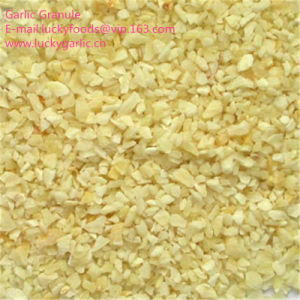 Suministro de fábrica el ajo granulado con buena calidad