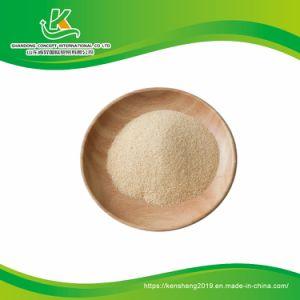 Malla de gránulos de ajo deshidratado 40-80 con raíz