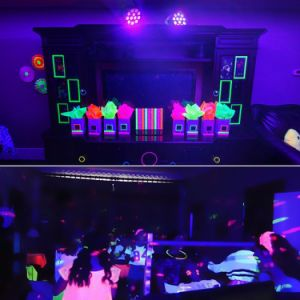 1W het Licht van de Disco van de Studio van Mini LEIDEN van de Partij 12PCS DJ van het PARI