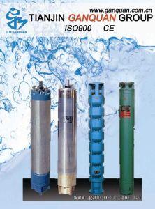 지구열학적인 잠수할 수 있는 시추공 펌프 (QJR)