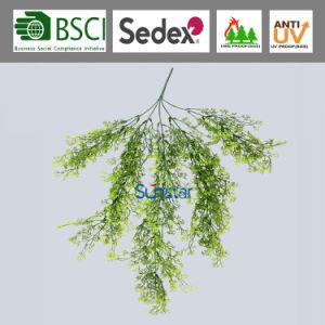 Planta colgante artificial anti UV para el exterior de plástico PE Selaginella para la decoración del hogar (47413)