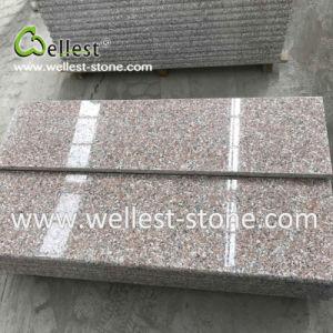 磨かれたピンクの花こう岩のステップ、階段そして暴徒、床のための丸みがある端と、