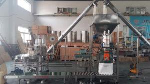 Macchina di rifornimento automatica della polvere della spezia (XFF-D)