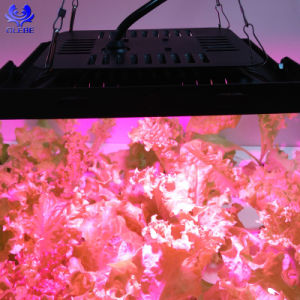 Ultra-Thin COB crescer LED Light 50W