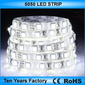 L'alta qualità DC12V impermeabilizza l'indicatore luminoso di striscia del LED 5050