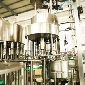 선형 유형을%s 가진 가득 차있는 자동적인 주문을 받아서 만들어진 물 충전물 기계 액체 병에 넣는 충전물 기계