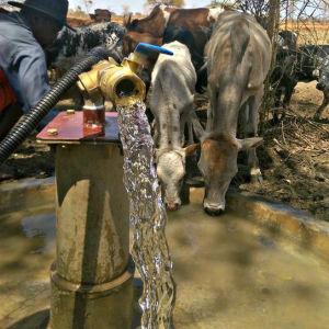3pouce de la pompe d'irrigation solaire 550W, alimentation en eau d'élevage, domestique pompe solaire