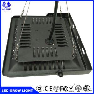 Crescem as luzes LED 50W Ultra-Thin LED Holofote LED luzes hidrop ico