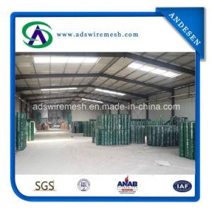 熱い販売! ! ! 1/2の正方形PVCによって塗られる溶接された金網