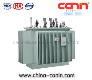 La serie S13 de 10KV/11KV/13kv de aceite del transformador