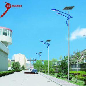 Calle la luz solar LED integrado en el exterior del patio de la luz de la calle Rural