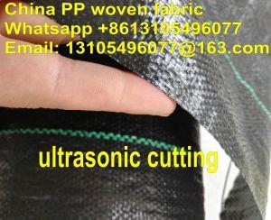 PP/HDPEによって編まれるGeotextileの頑丈な高品質