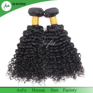 Verworrene lockige Menschenhaar-Extension natürliches brasilianisches Remy Jungfrau-Haar
