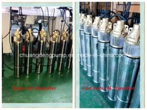 Wasser-Pumpe des einzelnen Stadiums-220V/50Hz Messingdes antreiber-SS