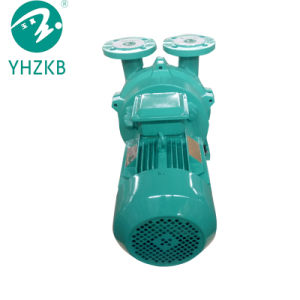 flüssige Vakuumpumpe des Ring-5.5kw/Luftpumpe