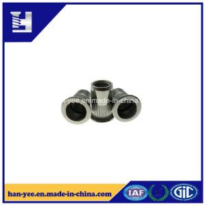 L'écrou plaqué zinc personnalisés fabriqués en Chine