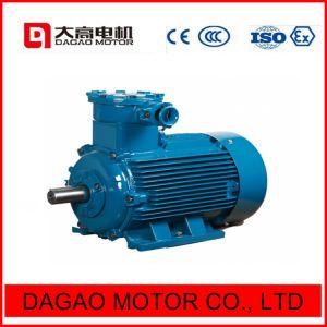 Explosion-Proof Motor eléctrico de alta eficiência energética ISO14001 ISO9000 Certificado só de segurança