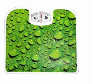 Salute che pesa la scala meccanica del peso corporeo della stanza del bagno