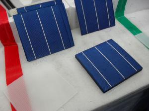 Monokristalline Solarzellen (SPSM156S-M1)