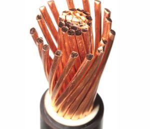 Duurzame pvc Geïsoleerdew pvc In de schede gestoken Vlam 0.6/1kv Van uitstekende kwaliteit - de Kabel van de vertragersMacht