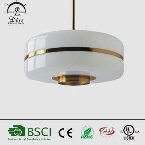 2017 hängende Lampe heiße des Verkaufs-kreative zeitgenössische Aufhebung-Innendekoration-Eisen-+Glass
