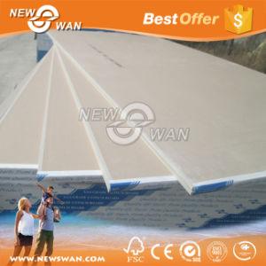 Placa de gesso padrão para a Placa de Parede e teto