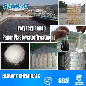 Poliacrilammide anionico/cationico di alta qualità per il purificatore di trattamento delle acque