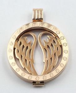 Роуз Gold Locket вычислений с плавающей запятой с взаимозаменяемыми монеты пластины