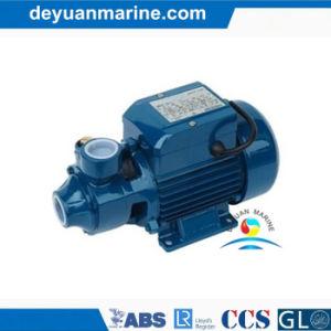 Self-Priming Vortex Pump 또는 Drinking를 위한 Fresh 및 Sea Water