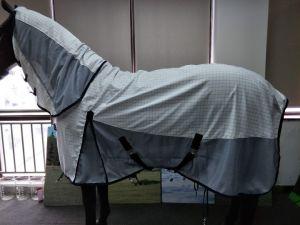 Strato combinato del cotone del cavallo dello strato di esposizione della coperta di estate del cavallo