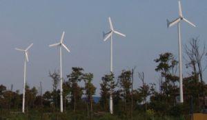 低い風領域のために普及した水平の軸線の風力の発電機