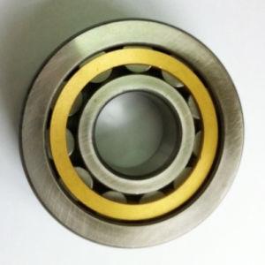 Moto Single-Row roulement à rouleaux cylindriques (NU309)