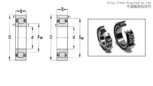 Rodamientos de rodillos cilíndricos (NU 1060)