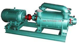 물 Ring Vacuum Pump (2SK Series)