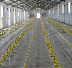 Estructura de acero prefabricados la capacidad para la Agricultura Granja