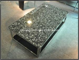 Shell Tafelbladen van de Steen van de Bloem de Zwarte Fossiele Marmeren
