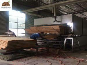 Деревообрабатывающие фанера из шпона сушки и сушильной машиной