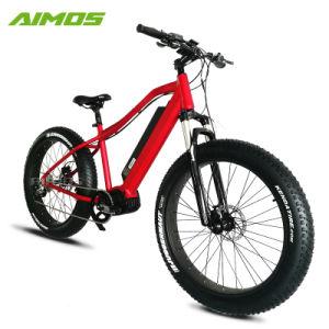 A mediados Bafang Aimos Motor impulsor de la playa de bicicleta eléctrica 1000W