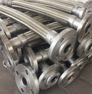 Puntali del tubo flessibile dell'acciaio inossidabile