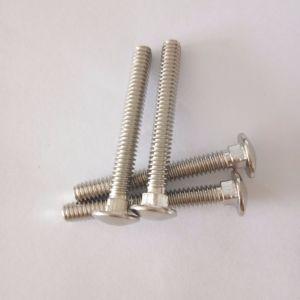 Застежка на молнию индивидуальные стальные фасонные оборудования винт с круглой головкой